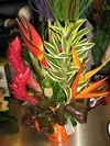 Vign_fleurs_mag_011