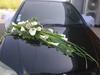 Vign_fleurs_mag_012