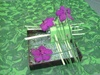 Vign_fleurs_mag_023