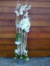 Vign_fleurs_mag_024