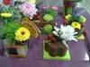 Vign_fleurs_mag_029