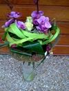 Vign_fleurs_mag_040